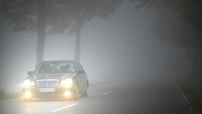 Herbst, Nebel, Mercedes-Benz